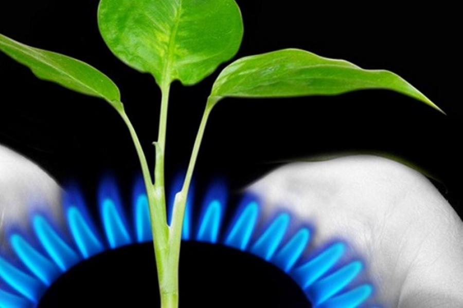 Gas: ¿El mejor aliado contra el Cambio Climático?